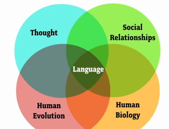 how language transformed humanity summary According to this biologist language is one of the most subversive means that we can use to express ourselves one very representative example is the censorship and the awareness that we have to pay attention to when we say or write anything  we will write a custom essay sample on how language transformed humanity specifically for you for.