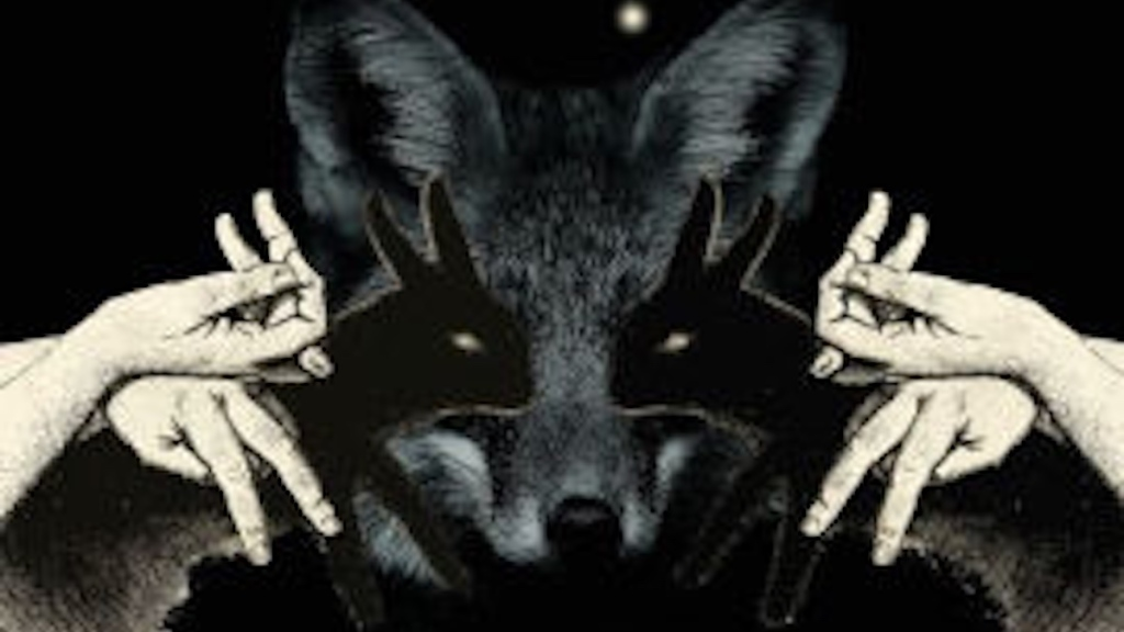 Detail from the book cover of Tricks of Light. Hands cast shadow rabbits over the face of a real fox.